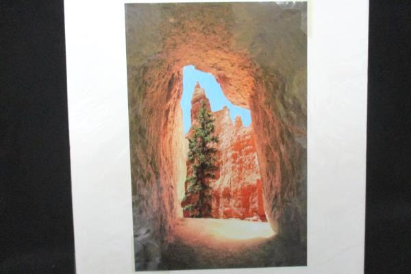 """Bryce Canyon Landscape Matted Photograph by Marilyn Affolter 10"""" x 6.5"""""""
