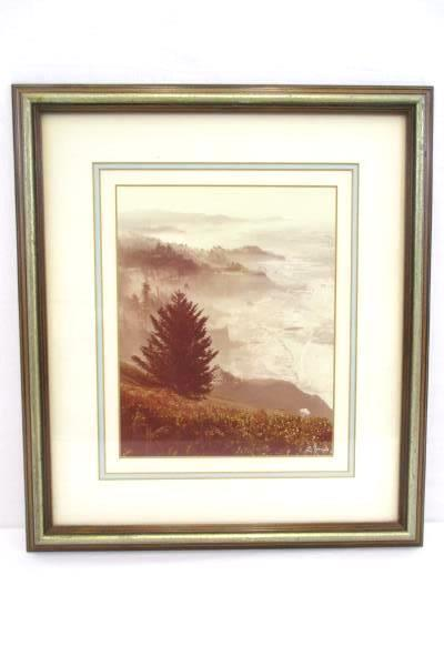 Foggy Morning Coastal View Trees & Cliffs Picture Framed Art Signed