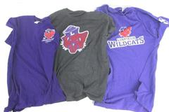 Linfield College Lot 3 T-Shirts Gray Purple 25th Anniversary Young Life College