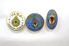 Lot of 3 Sweden Vasa Junior League Pin Hat Cap Enamel Blue White