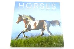 12 Month Horse Calendar T F Publishing Getty Images