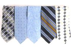 Lot 5 Men's Neck Ties Textured Polyester Silk Croft & Barrow Stafford Ted Baker