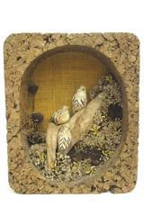 An Original Nature Craft Vtg Cork Wall Hang Diorama Birds Driftwood Real Plant