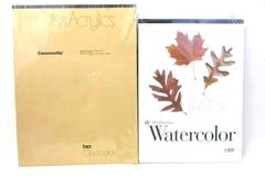 Lot of 2 Art Pads for Watercolor Oil Acrylic Strathmore BPC Canvasette 23 Sheets