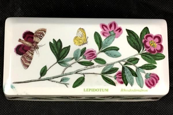 "Lepidotum Rhododendron Rectangular Ceramic Small 2"" x 6"" Bowl"