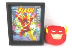 Lot of 2 The Flash Decor Framed Lenticular Picture Square Plush Head