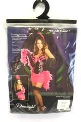 Dreamgirl I'm Just Teasin Halloween Party Costume Women's Size Small 3 Piece Set