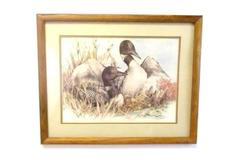 Alaskan Sketches Doug Linstrand Signed Golden Eye Duck Framed Art 1985