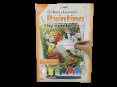 2013 Royal & Langnickel Paint By Numbers Set Birds PJS71-3T