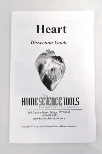 Home Science Tools Heart Dissection Guide and Trays Experiment Learning Kids 8+