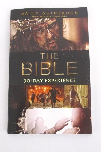2 Paperback Books The Bible 30-Day Experience & On Pilgrimage Sacred Journeys