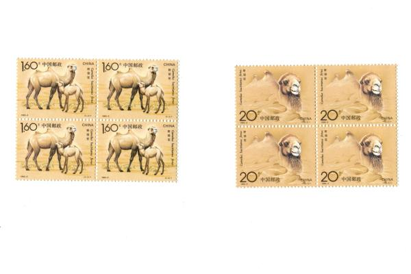 1993-3 China 2 Blocks of 4 Unused Wild Camel MNH Stamps