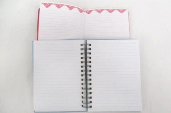 Lot of 2 Journals Blue Pink Flex Leather Faith Floral ~ NEW