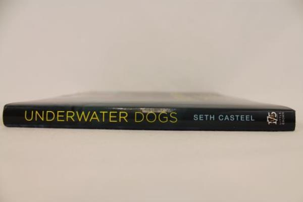 2012 UNDERWATER DOGS with Photos by Seth Casteel National Bestseller Hardcover
