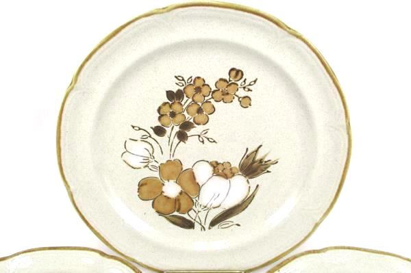 Vintage Lot 10 Barogue Autumn Fair Hearthside Stoneware Plates Salad Dinner