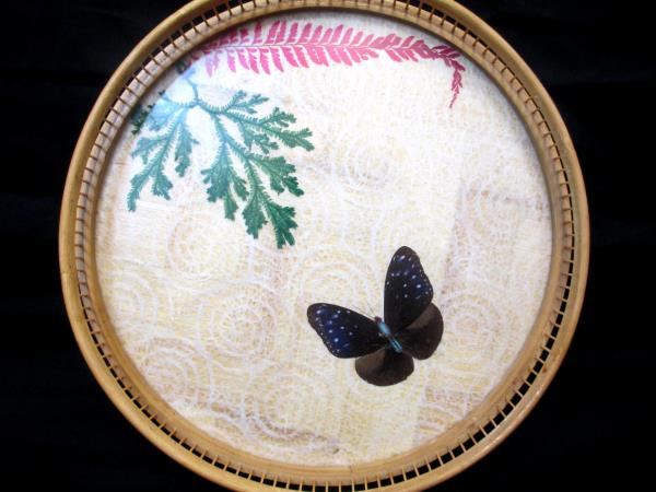 Set of 1 Serving Tray 6 Coasters Moths Butterfly Glass Wood Weaved Bottom