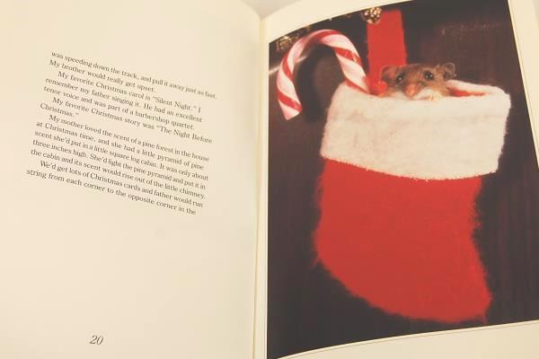 1991 Donald Zolan Children's Christmas Book First Edition Hardcover
