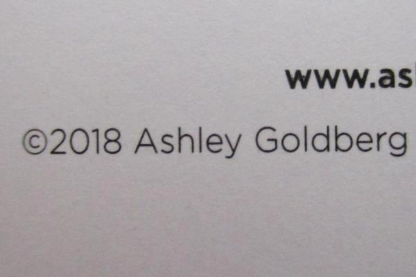 2 Ashley G Blue Sky 2018-19 Academic Weekly & Monthly Planner Spiral Bound