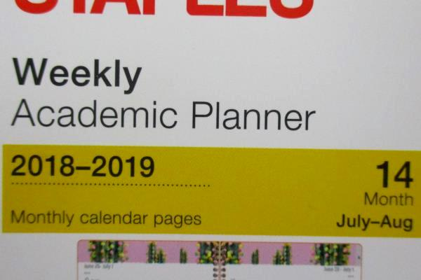 2 NEW Staples Weekly Academic Planner July 2018 - August 2019