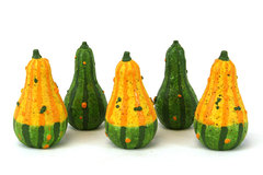 5 Miniature Gourd Table Decorations From Papel Giftware