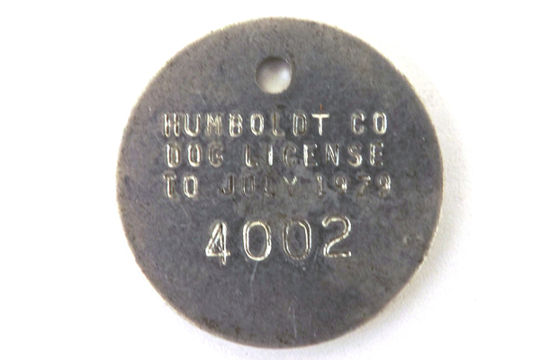 Vintage Humboldt County Dog License
