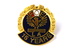 Vintage FOE Fraternal Order of the Eagle Lapel Pin 15 Years Gold Tone Metal