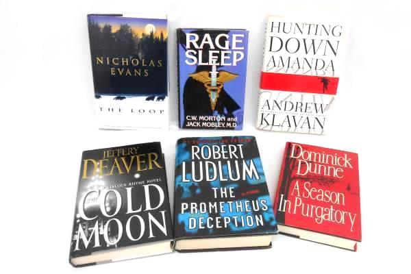 Lot of 6 Hardcover Novel Fiction Summer Reading Mystery & More
