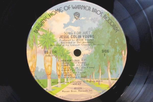 "Jesse Colin Young ""Song For Juli""  Vinyl LP 33 RPM"