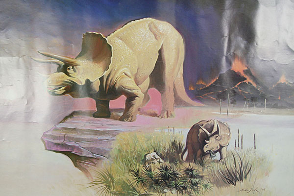 1988 Hastings Museum Foundation - Three Horned Face Triceratops - JOHN SUH