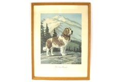 1955 The Saint Bernard Print By Wesley Dennis