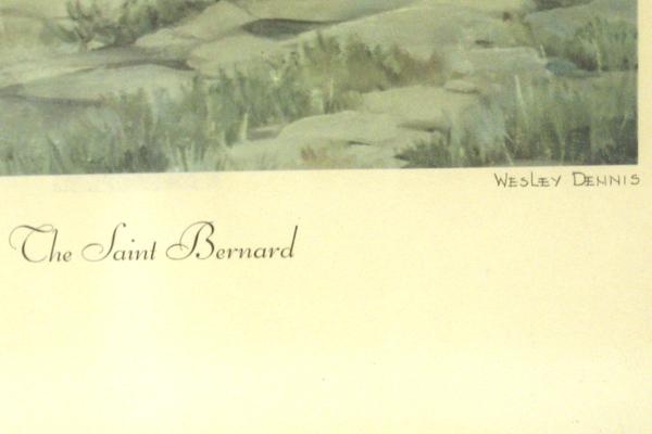 1955 The Saint Bernard Print By Wesley Dennis