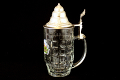 0.5L Furstenhof Bad Wildungen Glass Beer Mug with Lid