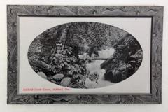 Vintage 1900's Postcard RPPC Ashland Creek Canon, Ashland, OR #1142 Unused