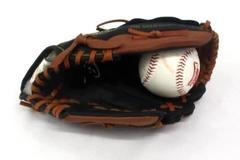 """Rawlings Players Series Youth Baseball Glove 9 1/2"""" Basket Web w/ Beavers Ball"""